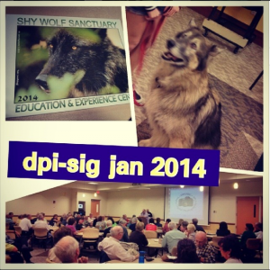 dpi sig meeting January 2014
